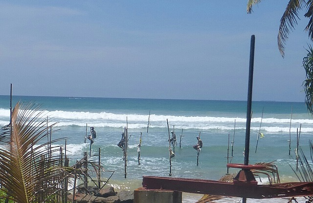 Stilt fishermen at Koggola