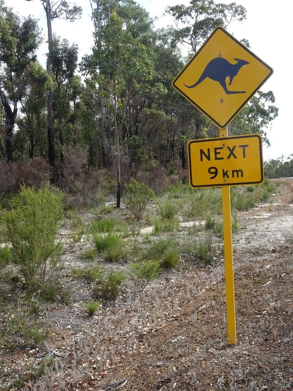Return journey - Ozzie road sign
