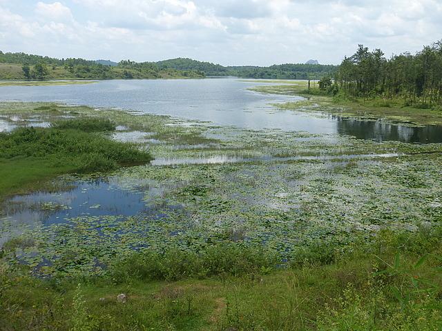 Day trip - lake