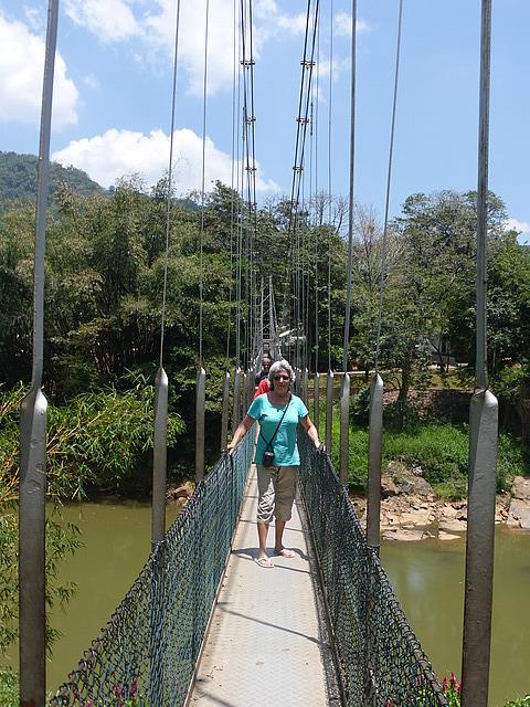 Peradeniya Botanical Gardens - suspension bridge