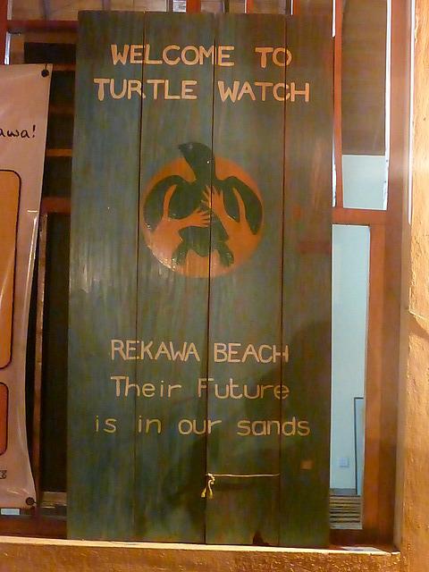 Rekawe Beach Turtle Watch