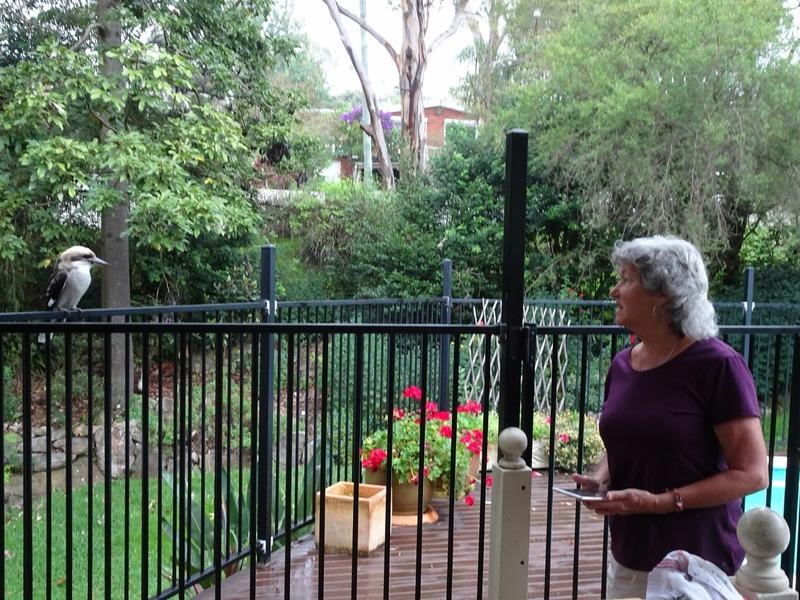 Lindsey and friendly Kookaburra in J&T's garden