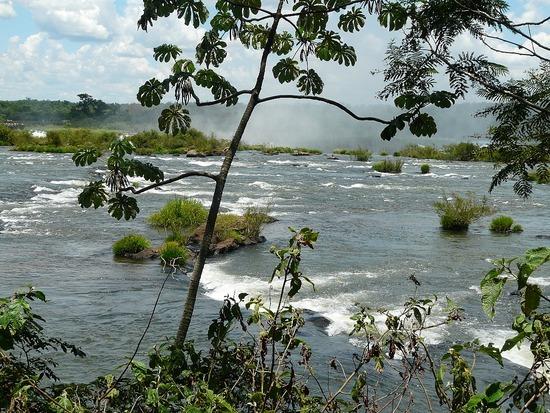 Iguaçu Brasil 12 - Upriver