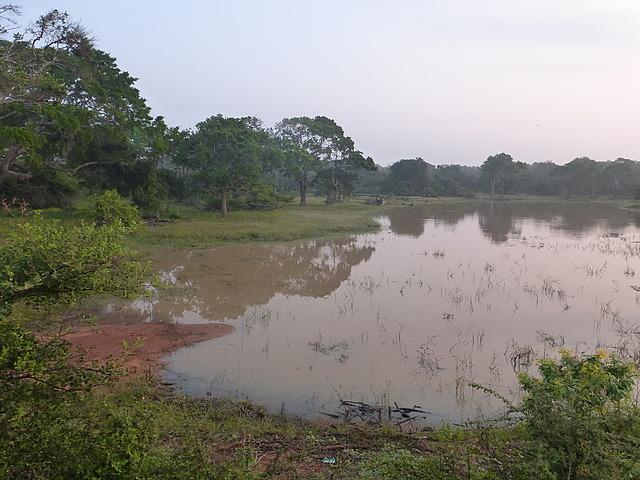 Yala scenery 1