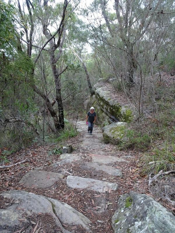 Royal National Park Walk - climbing back up to ridge