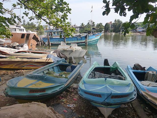 Negombo Lagoon 8