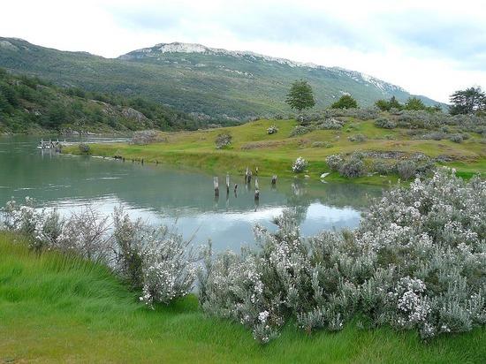 Day 2 - Tierra del Fuego Nat Park 4