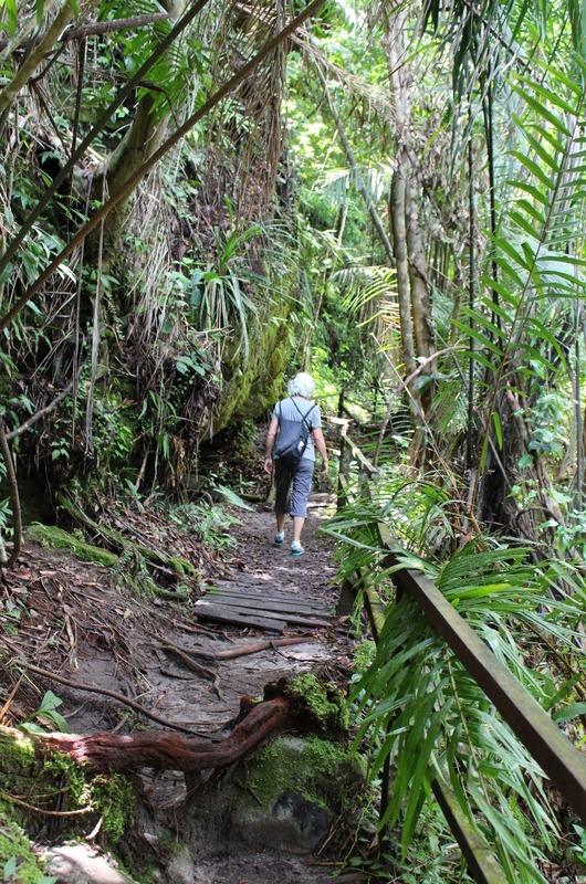 Track 3 to Teluk Paku