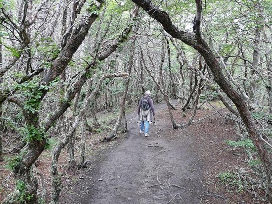 Day 2 - Tierra del Fuego Nat Park 6