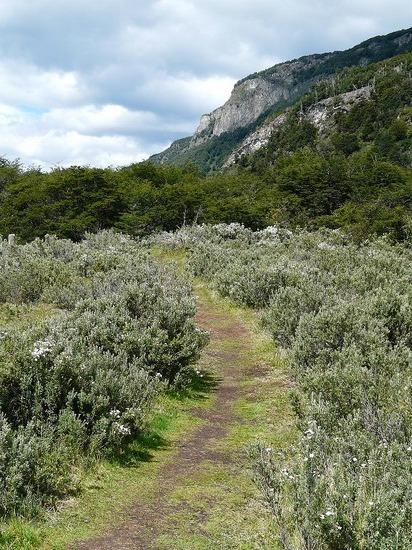 Day 2 - Tierra del Fuego Nat Park 8