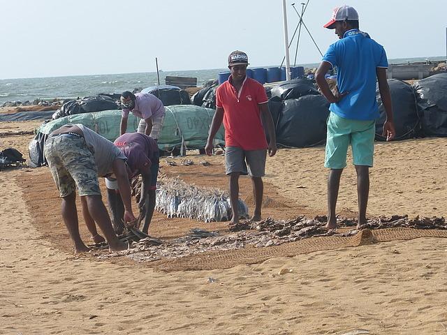 drying fish 4