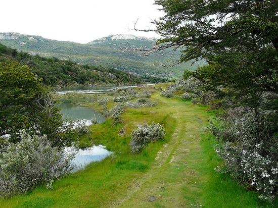 Day 2 - Tierra del Fuego Nat Park 2