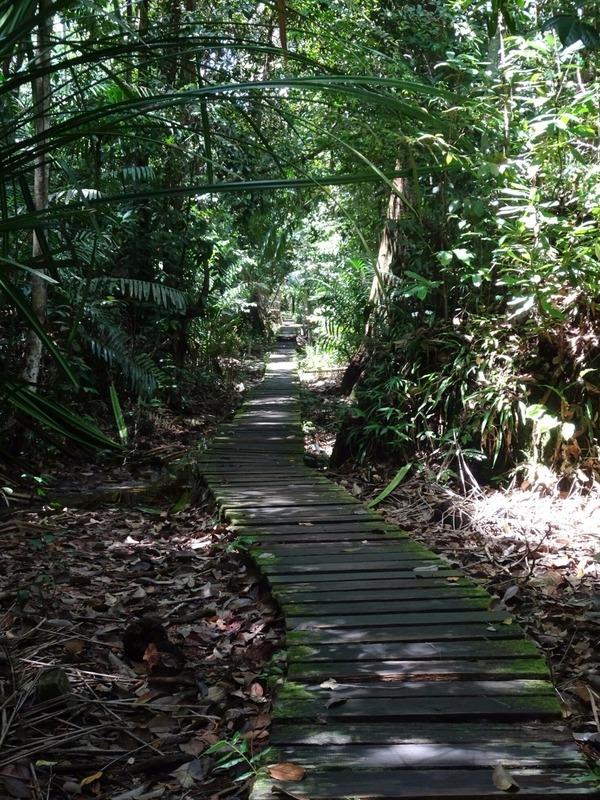 Track 2 to Teluk Delima 3