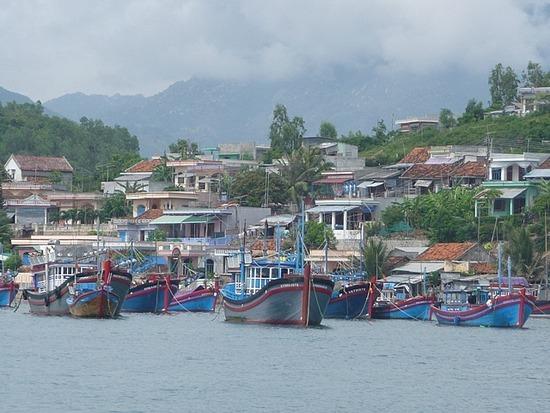 Boat Trip - Fishing Boats