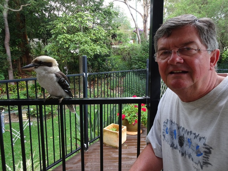 Alan's selfie with friendly Kookaburra at T&J's