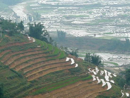 Ta Van trek - Rice terraces 2