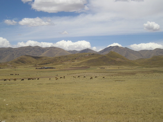 Cusco to Puno by Bus 2