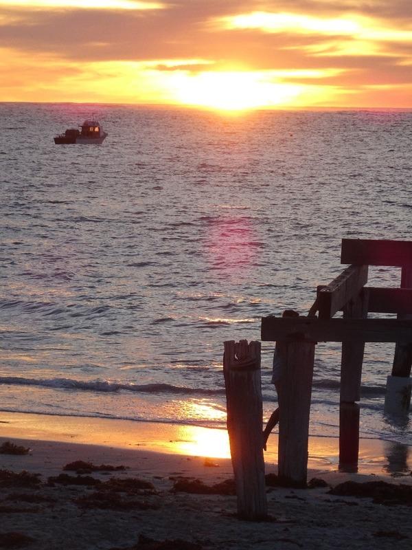 Hamelin Bay - Sunset