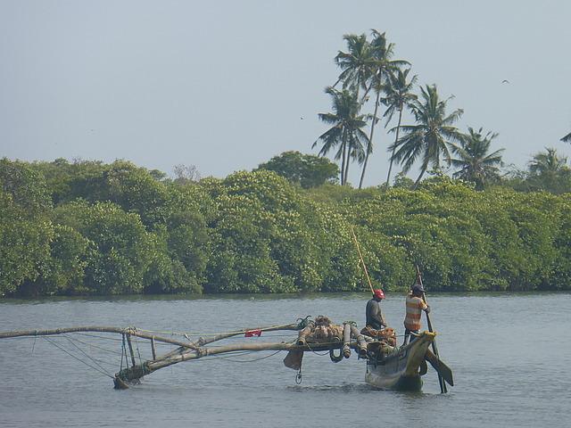 Negombo Lagoon 2