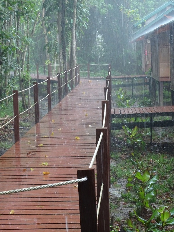 Last morning - wet!