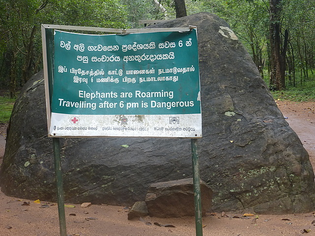 Walk to Sigiriya entrance - warning