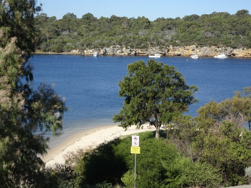 Picnic Spot - Chidley Point Swan river