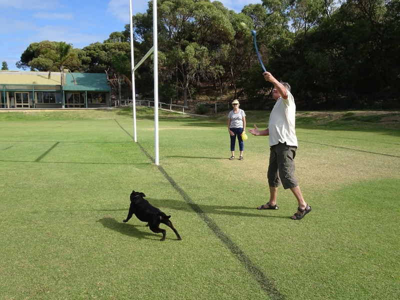 Exercising the dog!