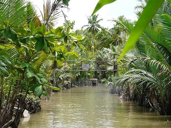 Mekong Waterways near My Tho 4