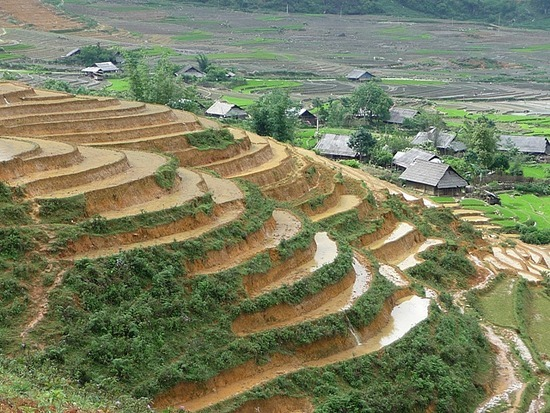 Ta Phin Trek - More terraces and village