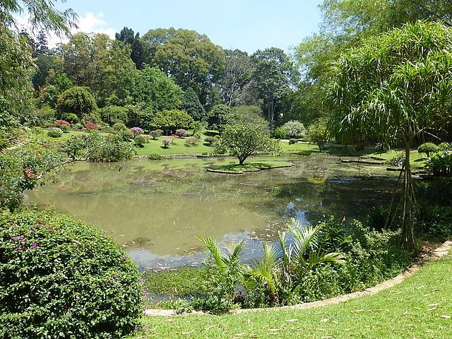Peradeniya Botanical Gardens