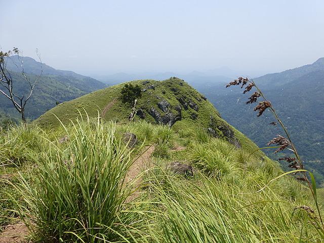 Little Adam's Peak - view from top 2