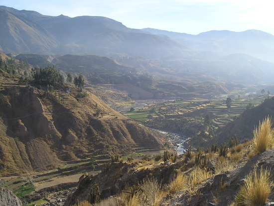 Colca Trip - Colca Valley 1