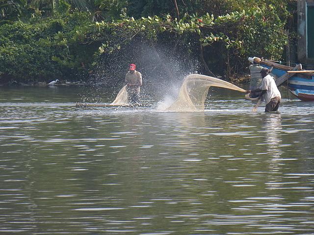 Negombo Lagoon 6