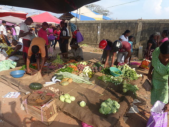 Negombo town market by the sea 5