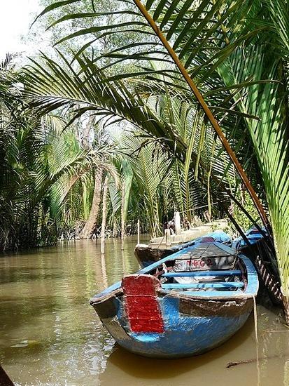 Mekong Waterways near My Tho 7