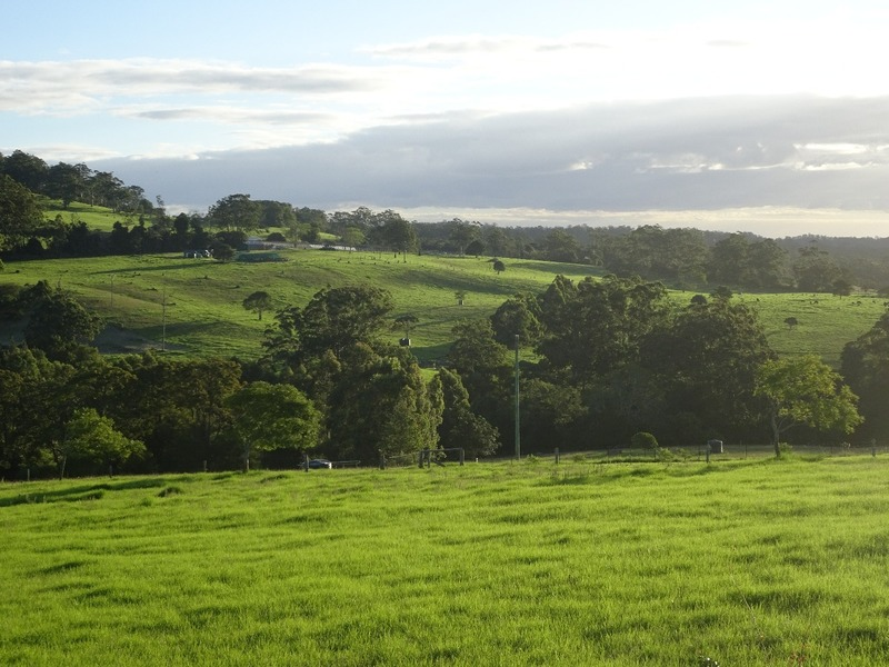 Ravensbourne scenery