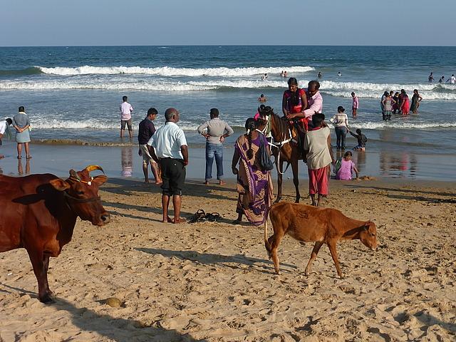 Beach scene by Shore Temples 1