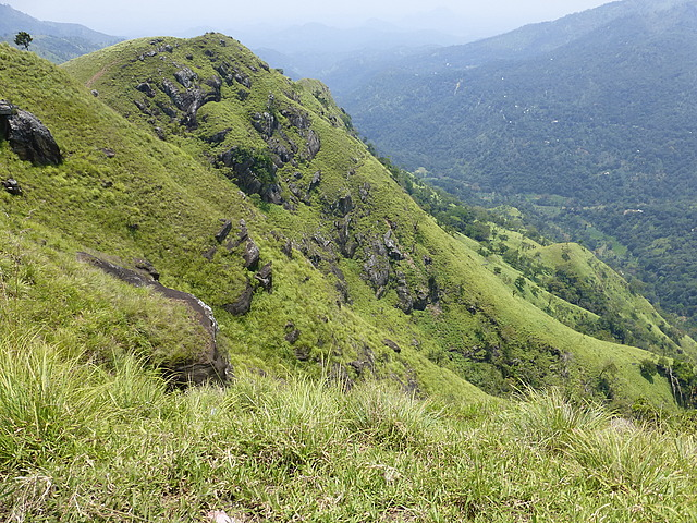 Little Adam's Peak - view from top 3