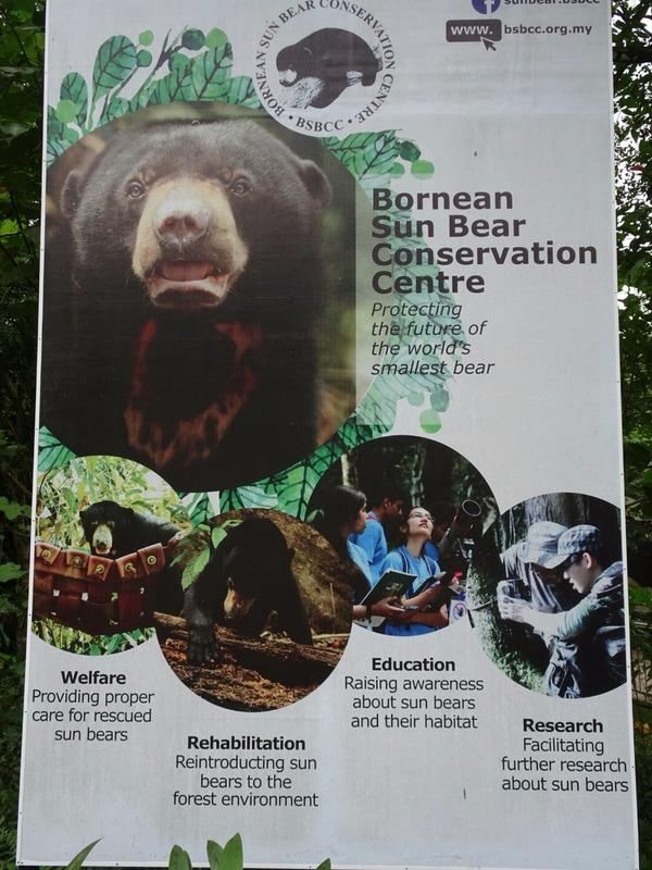 Borneo Sun Bear Conservation Centre (BSBCC)
