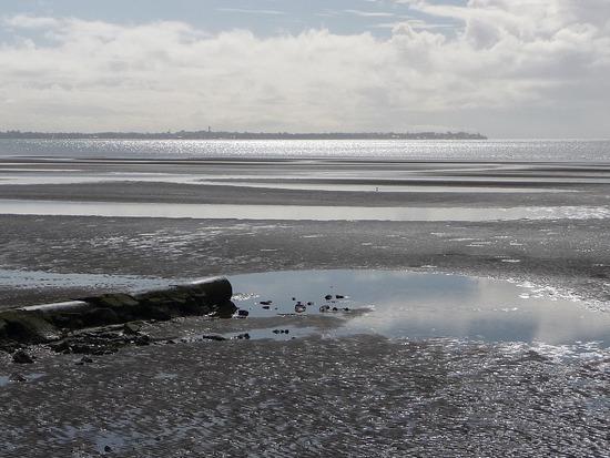 Sandgate - Moreton Bay 2