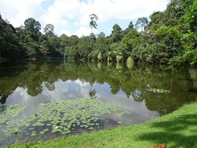RDC - Lake