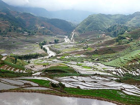 Sapa - Valley 1
