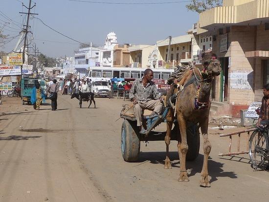Around Pushkar Town 4