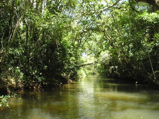 Iguazu Argentina EcoTrip 2