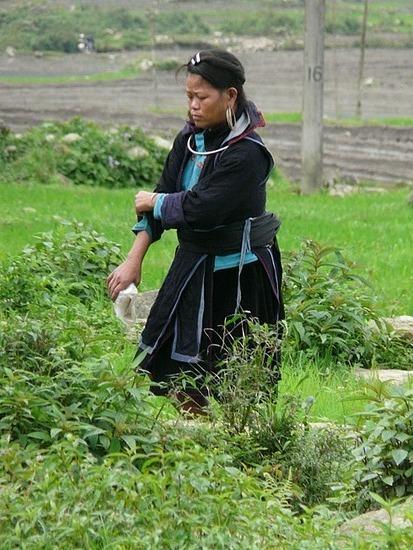 Ta Phin Trek - Hmong lady