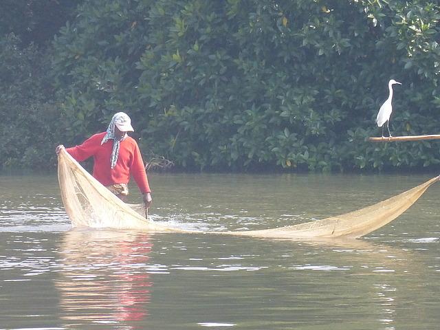 Negombo Lagoon 5