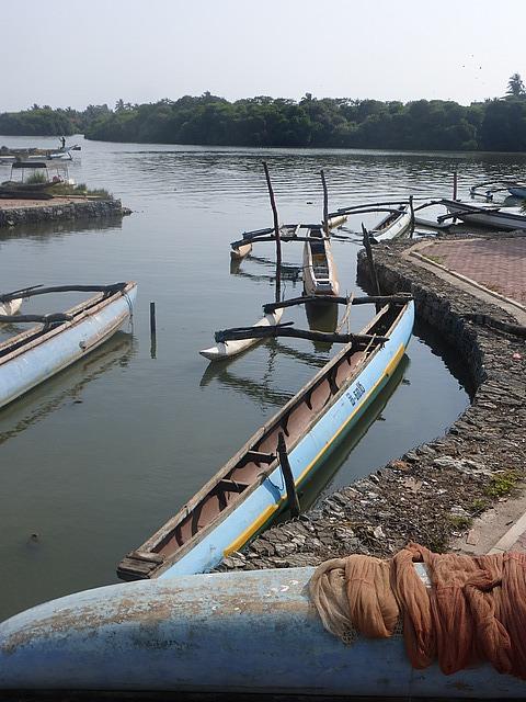 Negombo Lagoon 7