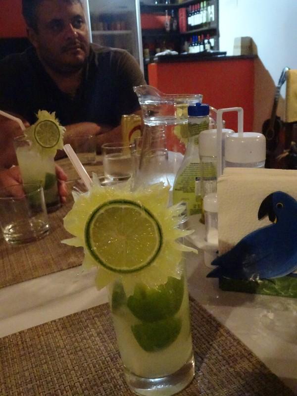 Pantanal Extreme Tour - Day 3 - Caipi time!