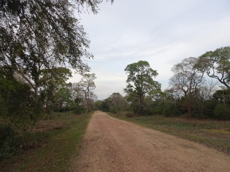 Pouso Alegre Lodge Entrance track (6 kms)