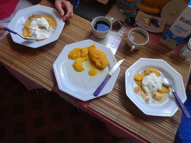 Breakfast - Granola, Mango, Milk and Yogourt - delicious